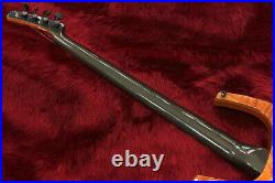 Parker Fly Bass USA Graphite Neck Very Rare Model Electric Bass with Soft Case